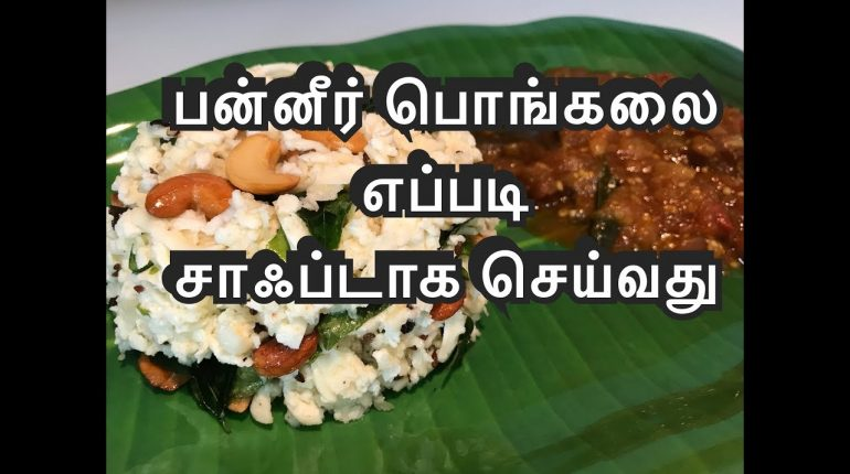 Keto / Paleo diet paneer pongal Tamil& kathirikkai kothsu | Keto recipes Paneer recipes | Jo kitchen